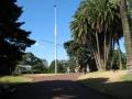 010 - Albert Park -