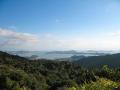 Entre Coromandel Town et Whitianga