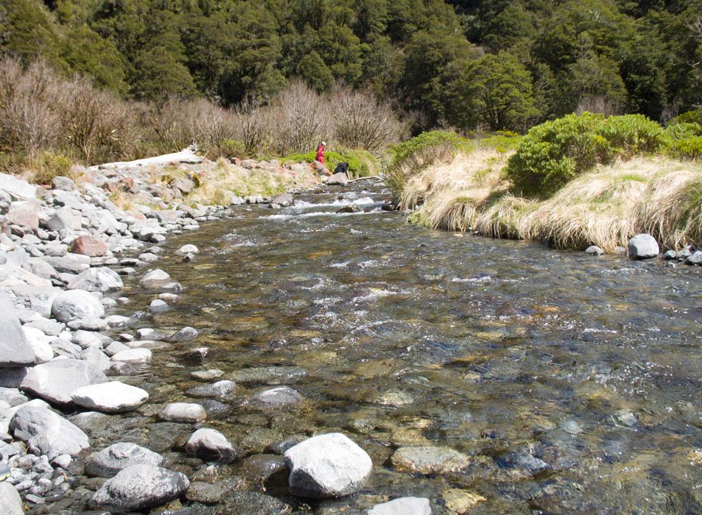 370 - Rivière de Monkey Creek