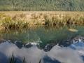 364 - Reflets dans Mirror Lake