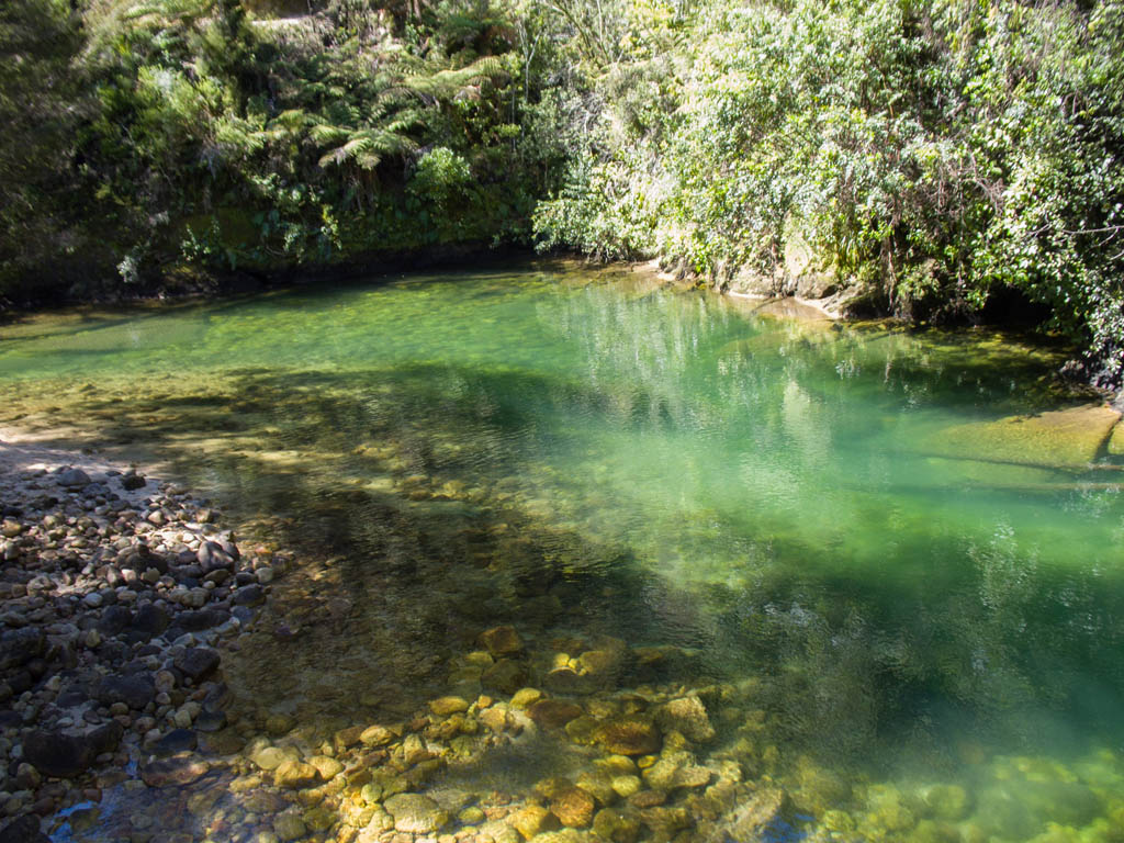 Bassin dans le Parc National Abel Tasman