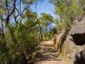 Coastal Track d'Abel Tasman National Park