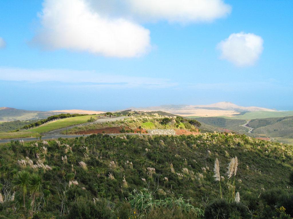 098 - La route vers Cap Reinga