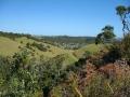 071 - Vue de Matapouri Town