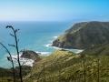 106 - Côte nord de la Nouvelle-Zélande