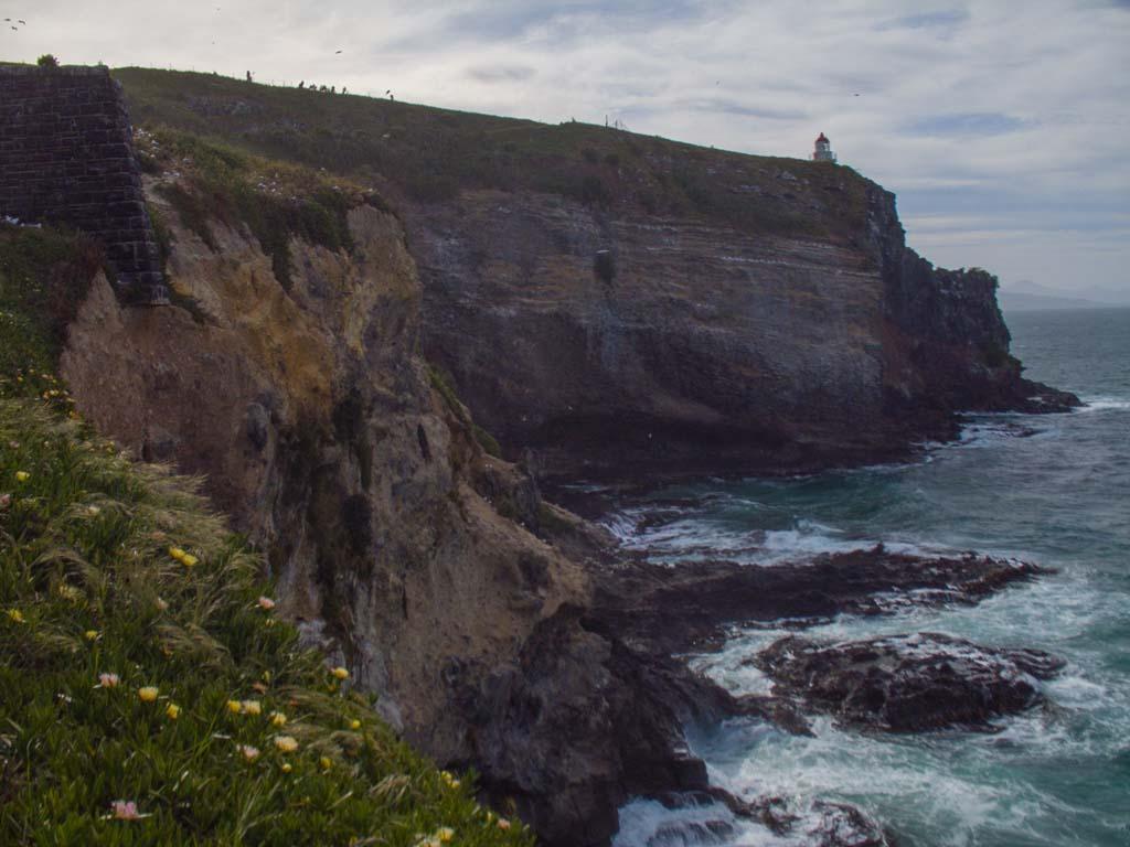 Taiaroa Head à Otago Peninsula
