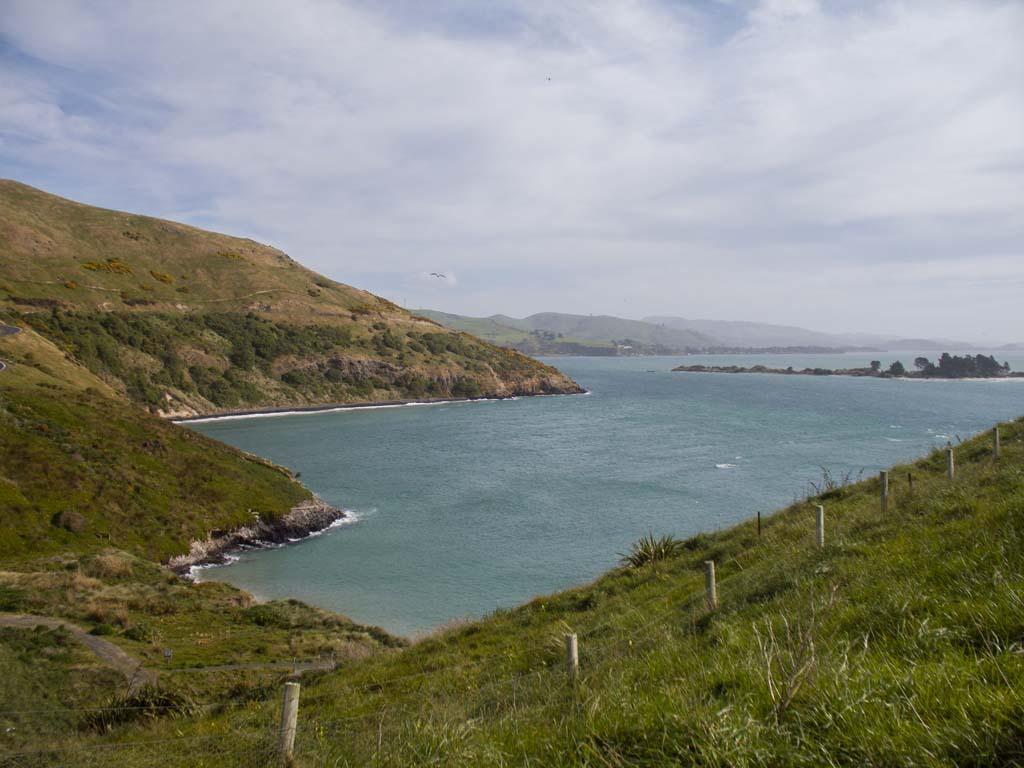 Pilots Beach à Otago Peninsula