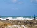 Admiration des vagues à Curio Bay