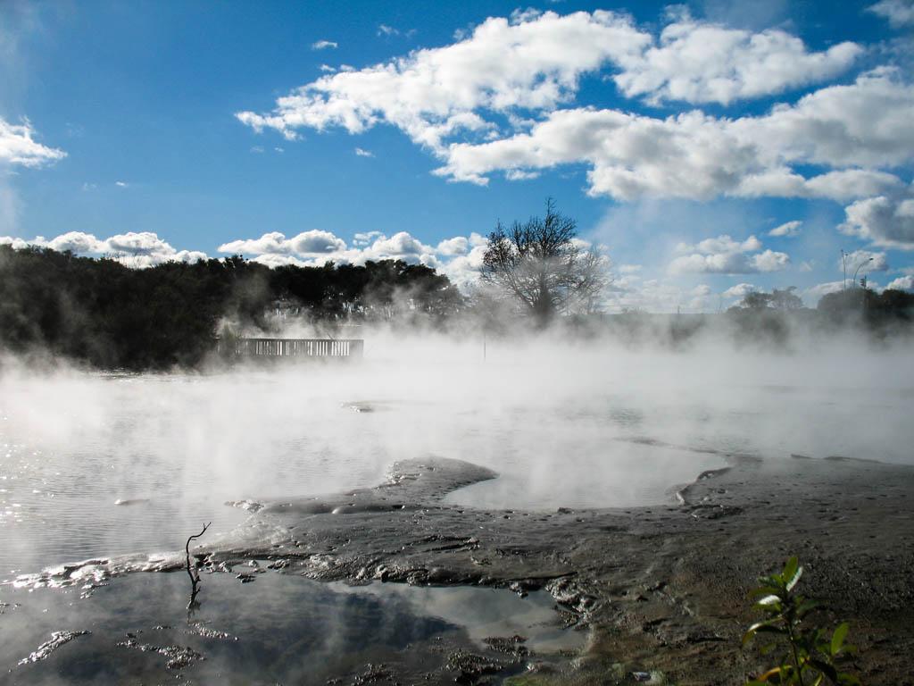 Bassin plein de vapeur à Rotorua
