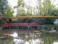 Jardin Chinois (Hamilton Garden)