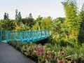 Tropical Garden (Hamilton Garden)