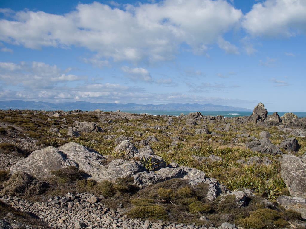 Paysage rocheux de Turakirae