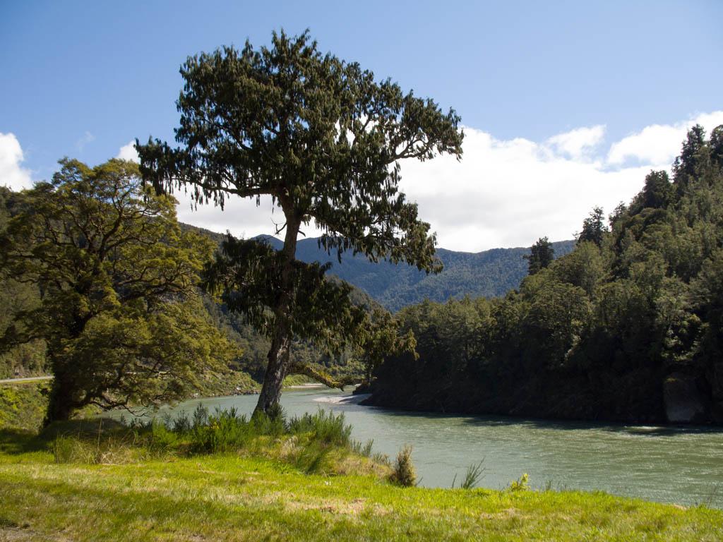 Blufer River