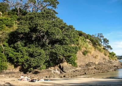 Matapouri-Bay - Crique