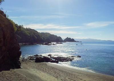 Matapouri Bay - Derriere la plage