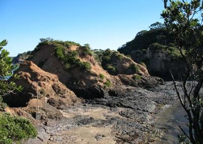 Tutukaka Walkway - Crique 3