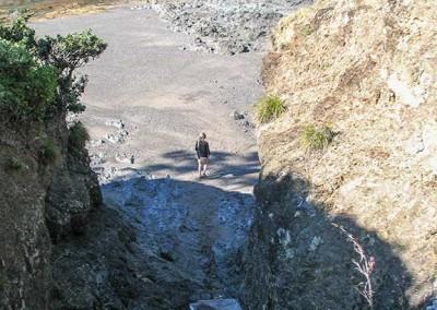 Tutukaka Walkway - Passage crique