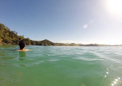 Whale Bay - Baignade