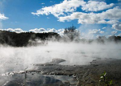Bassin de boue à Rotorua