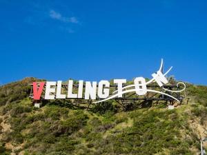 Panneau de Wellington