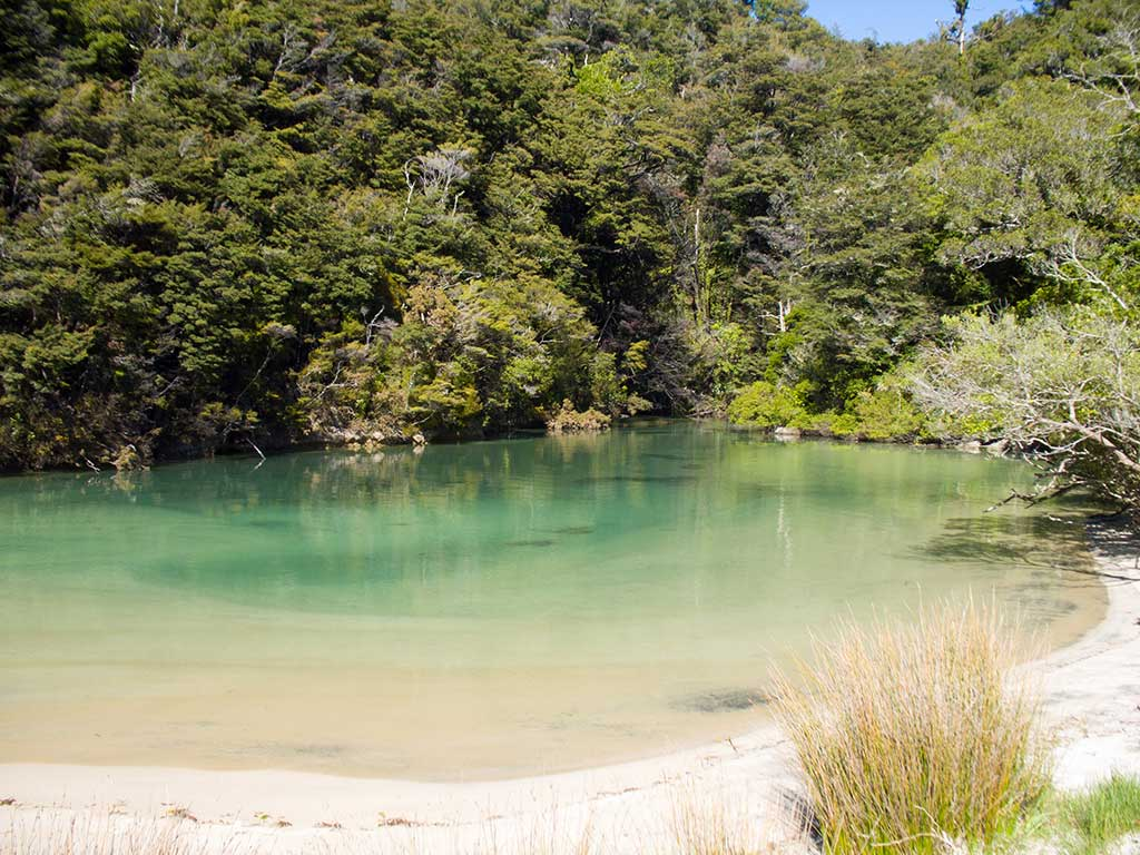 Abel Tasman - Medlands Beach