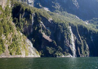 Milford Sound Cruise 08