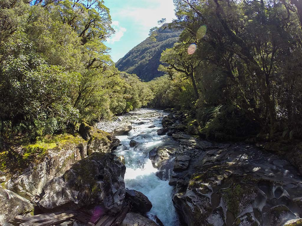 Cleddau River - Nouvelle-Zélande