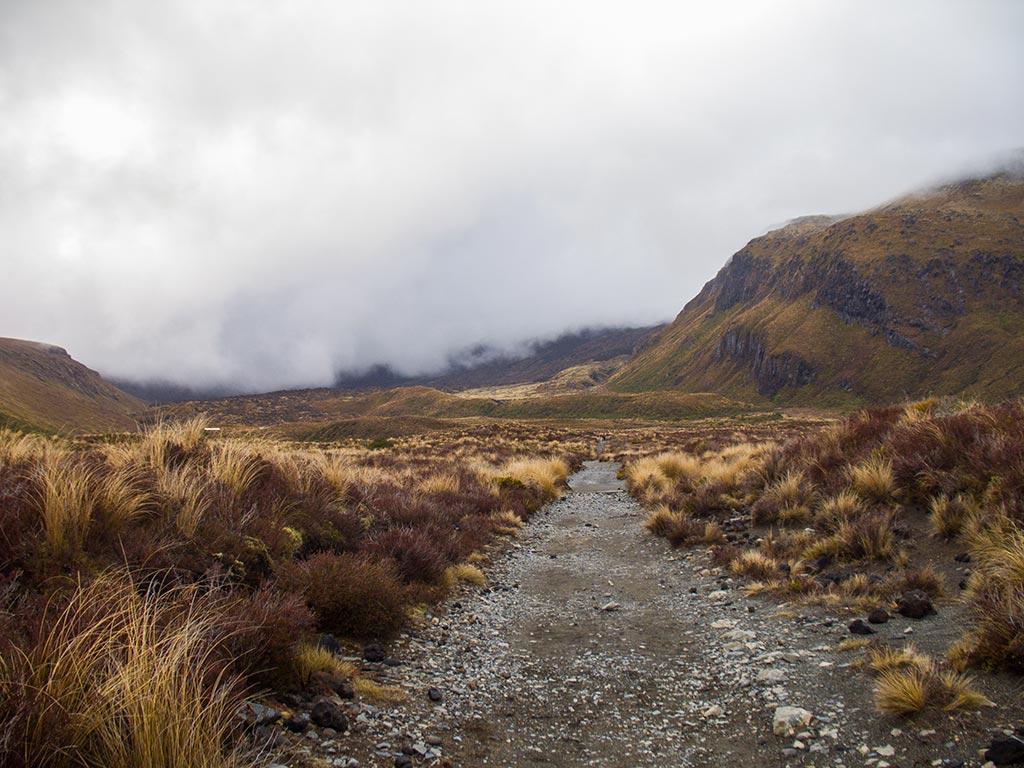 Tongariro Alpine Crossing - Début de la randonnée